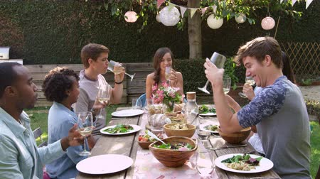 meal : Friends Making A Toast At Outdoor Backyard Party Stock Footage