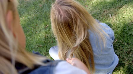 плечо : Young girl braiding mothers hair in a park, elevated view