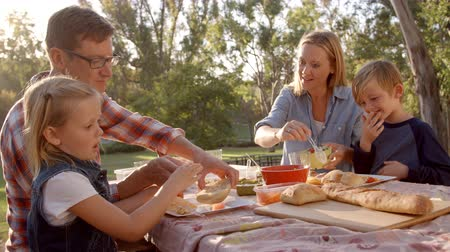 each other : Young white family enjoying a picnic at a table in a park Stock Footage