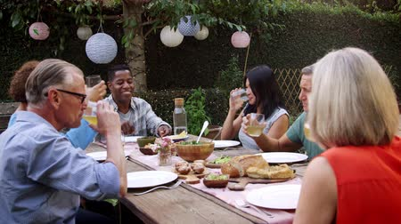 amadurecer : Mature Friends Enjoying Outdoor Meal In Backyard Shot On R3D Stock Footage