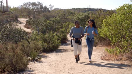 в середине : African American mother hiking with her adult daughter