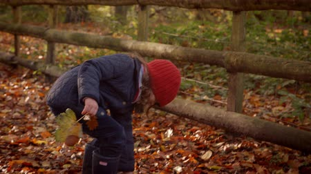 woodland : Young Girl Playing With Leaves On Walk In Autumn Countryside
