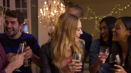 into the camera : Friends Make Toast As They Celebrate At Party Together Stock Footage