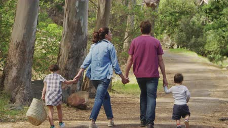 comprimento total : Rear View Of Family Walking Along Path Through Forest Together Stock Footage