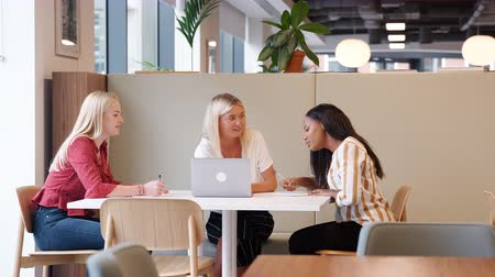 trzy : Three young businesswomen collaborating on project using computer in modern open plan office