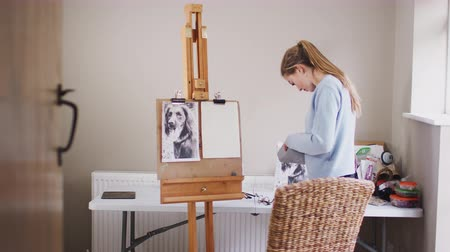 płótno : View through doorway as female teenage artist prepares to draw portrait of pet dog from photograph - shot in slow motion Wideo