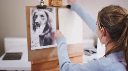 płótno : Female teenage artist prepares to draw portrait of pet dog from photograph - shot in slow motion