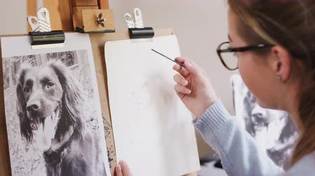 pasu nahoru : Female teenage artist draws outline for portrait of pet dog in charcoal from photograph - shot in slow motion