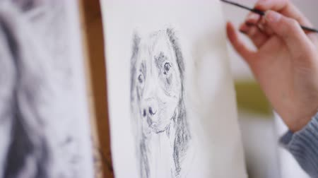 vászon : Close up of artist drawing portrait of dog in charcoal blending using smudging technique - shot in slow motion