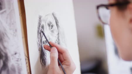 photograph : Female teenage artist draws portrait of pet dog in charcoal from photograph - shot in slow motion