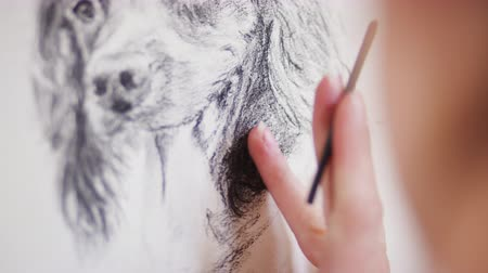 времяпровождение : Close up of artist working on portrait of dog in charcoal - shot in slow motion Стоковые видеозаписи