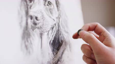 vászon : Close up of artist working on portrait of dog in charcoal - shot in slow motion Stock mozgókép