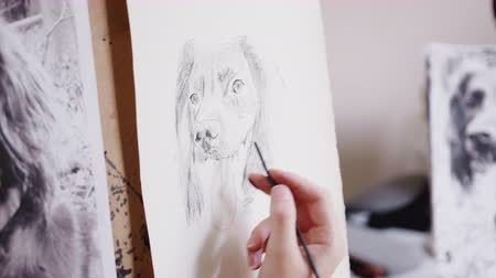 yoğunlaşma : Close up of artist working on portrait of dog in charcoal - shot in slow motion Stok Video