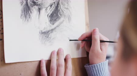 на камеру : Close up of artist signing portrait of pet dog in charcoal - shot in slow motion