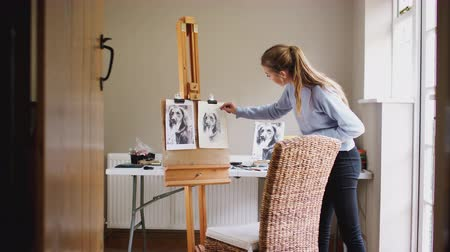 времяпровождение : View through doorway as female teenage artist works on portrait of pet dog in charcoal from photograph - shot in slow motion