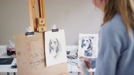 płótno : Female teenage artist stands by easel spraying fixative onto portrait of pet dog in charcoal - shot in slow motion