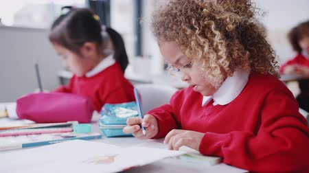 schoolbook : Close up of mixed race schoolgirl drawing at desk in an infant school classroom, focus on foreground