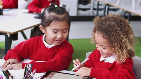 using stylus : Young mixed race schoolgirls in an infant school classroom drawing using a tablet computer, close up Stock Footage
