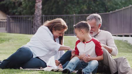 baixo ângulo : Senior Hispanic couple sitting on grass tickling their grandchildren and smiling to camera
