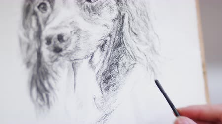 odstín : Close up of artist working on portrait of dog in charcoal - shot in slow motion Dostupné videozáznamy