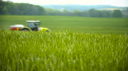 veneno : Farming. Agriculture background. Stock Footage