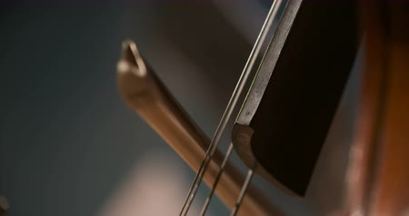 houslista : Cello in orchestra. Musician playing Cello