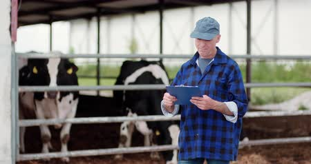 obora : Farmer analyzing and writing on clipboard against cowshed Wideo