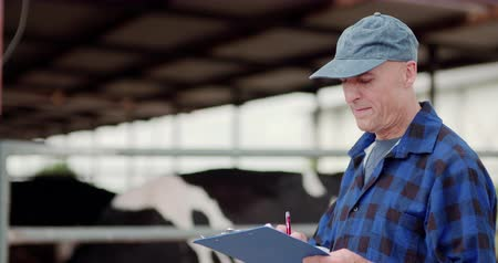 pléd : Farmer analyzing and writing on clipboard against cowshed Stock mozgókép