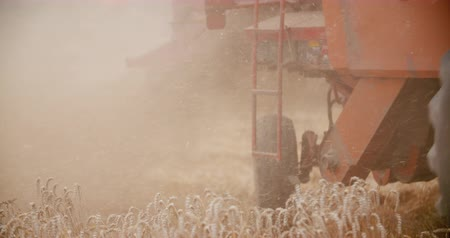 geschnetzeltes : Close-up of combine harvester on field at farm