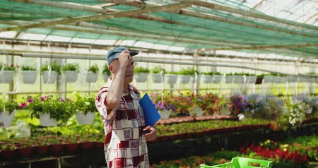 ogrodnik : Researcher Examining Potted Plant At Greenhouse Wideo