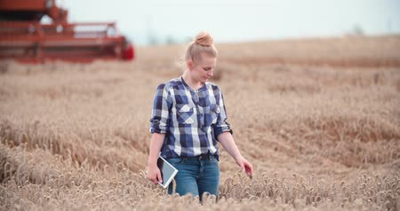 abundância : Portrait of female farmer with digital tablet at farm Stock Footage