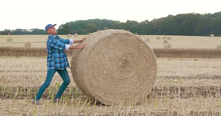 balé : Smiling farmer rolling hay bale and gesturing in farm