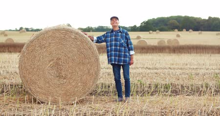 bales : Smiling farmer rolling hay bale and gesturing in farm
