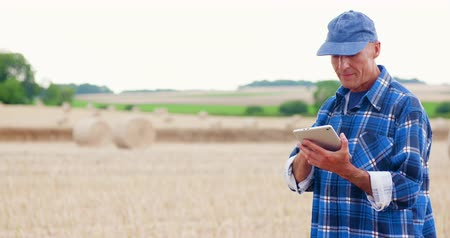 ekili : Farmer using digital tablet while examining field