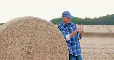 palheiro : Farmer using digital tablet while standing by hay bale Stock Footage