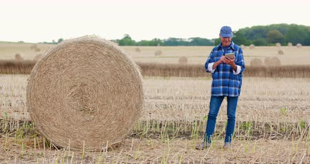 bales : Agriculture Farmer working on Field on Digital Tablet Computer
