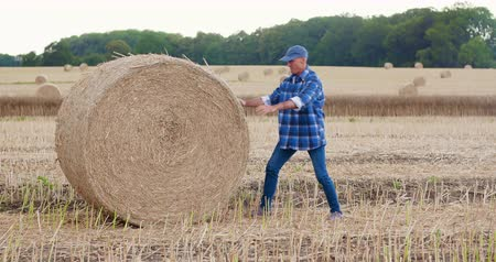 bales : Farmer struggling while rolling hay bale at farm Stock Footage