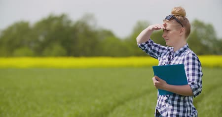 panoya : Farmer with clipboard examining plants during windy day Stok Video