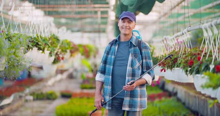 nursing : Agriculture Confident male gardener examining potted flower plant Stock Footage