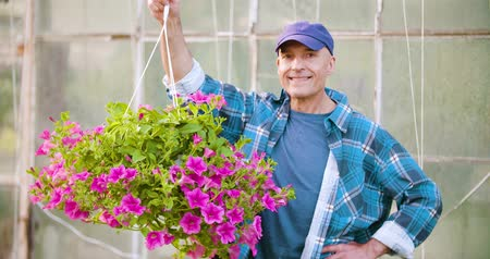ogrodnik : Agriculture Confident male gardener examining potted flower plant Wideo