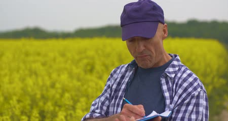 mais : farmer examining agriculture field on farm