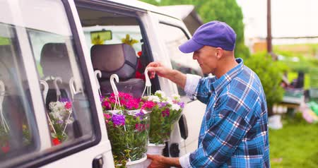 haak : Male Farmer Loading Van Trunk With Hanging Plants Stockvideo