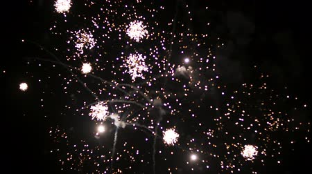 pirotecnia : Fireworks at the beginning of the new year. In black night
