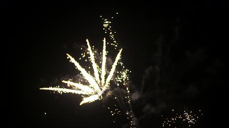 rocznica : Fireworks at the beginning of the new year. In black night