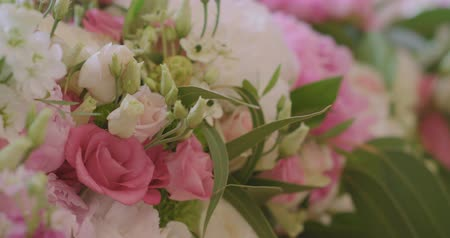 absence : Wedding Reception Venue With White Flower Decoration Stock Footage