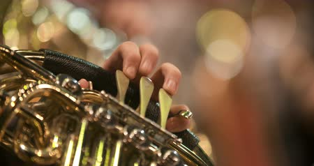 trąbka : Musician playing French horn during concert