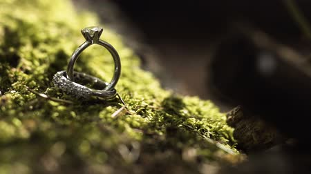 platina : Wedding rings on green moss