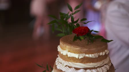 tiered : Beautiful shot of Wedding Cake during wedding reception