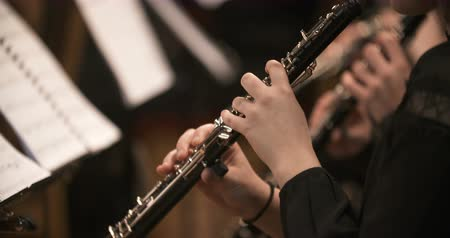 симфония : femalne musician playing clarinet during concert