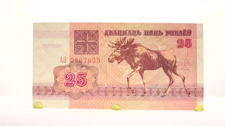 yirmi : Belarusian 25 Rubles This 25 ruble of Belarus is another bill for your collection. Stok Video